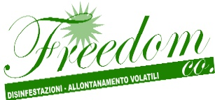 Freedom Co. S.r.l