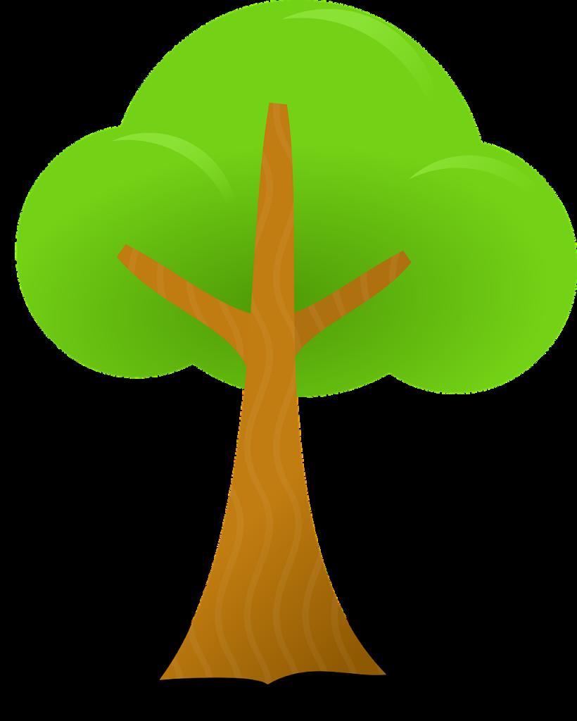 trees-38085_1280